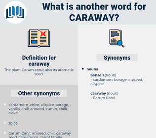 caraway, synonym caraway, another word for caraway, words like caraway, thesaurus caraway