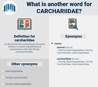 carchariidae, synonym carchariidae, another word for carchariidae, words like carchariidae, thesaurus carchariidae