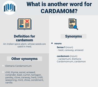 cardamom, synonym cardamom, another word for cardamom, words like cardamom, thesaurus cardamom