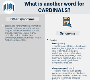 cardinals, synonym cardinals, another word for cardinals, words like cardinals, thesaurus cardinals