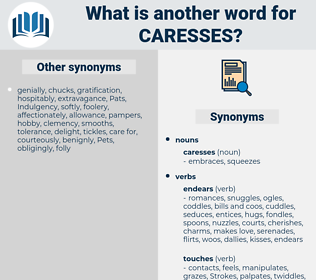 caresses, synonym caresses, another word for caresses, words like caresses, thesaurus caresses
