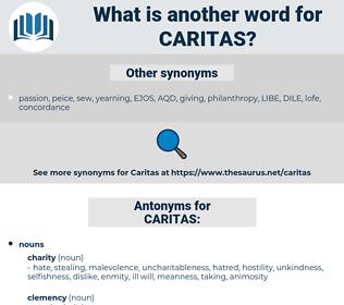 CARITAS, synonym CARITAS, another word for CARITAS, words like CARITAS, thesaurus CARITAS