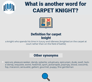 carpet knight, synonym carpet knight, another word for carpet knight, words like carpet knight, thesaurus carpet knight