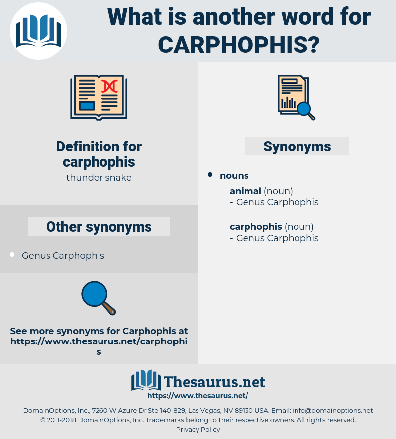 carphophis, synonym carphophis, another word for carphophis, words like carphophis, thesaurus carphophis