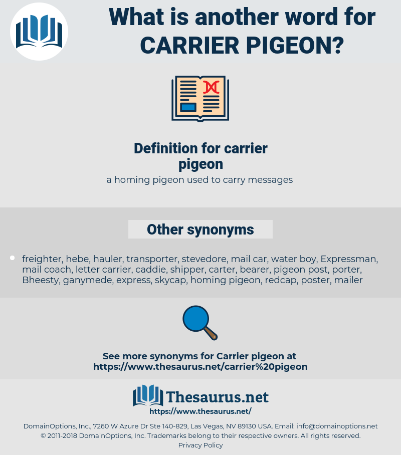 carrier pigeon, synonym carrier pigeon, another word for carrier pigeon, words like carrier pigeon, thesaurus carrier pigeon