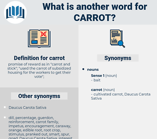 carrot, synonym carrot, another word for carrot, words like carrot, thesaurus carrot