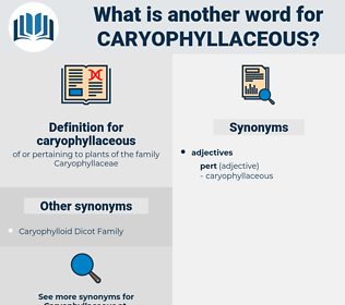 caryophyllaceous, synonym caryophyllaceous, another word for caryophyllaceous, words like caryophyllaceous, thesaurus caryophyllaceous