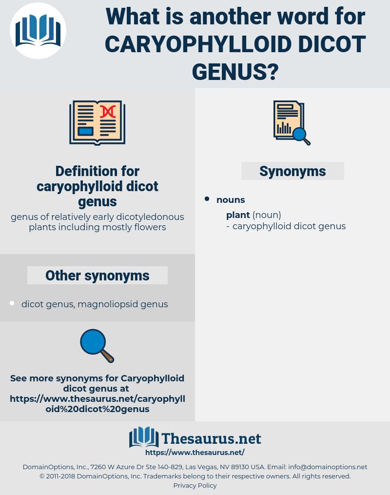 caryophylloid dicot genus, synonym caryophylloid dicot genus, another word for caryophylloid dicot genus, words like caryophylloid dicot genus, thesaurus caryophylloid dicot genus
