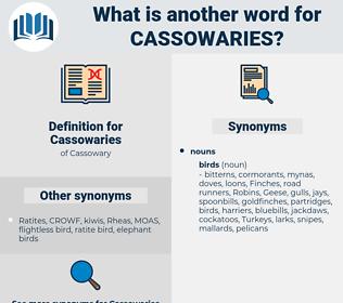 Cassowaries, synonym Cassowaries, another word for Cassowaries, words like Cassowaries, thesaurus Cassowaries