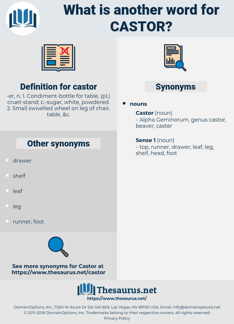 castor, synonym castor, another word for castor, words like castor, thesaurus castor