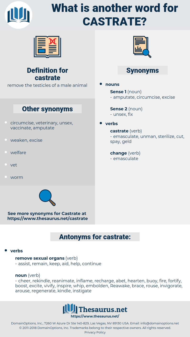castrate, synonym castrate, another word for castrate, words like castrate, thesaurus castrate