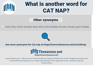 cat nap, synonym cat nap, another word for cat nap, words like cat nap, thesaurus cat nap