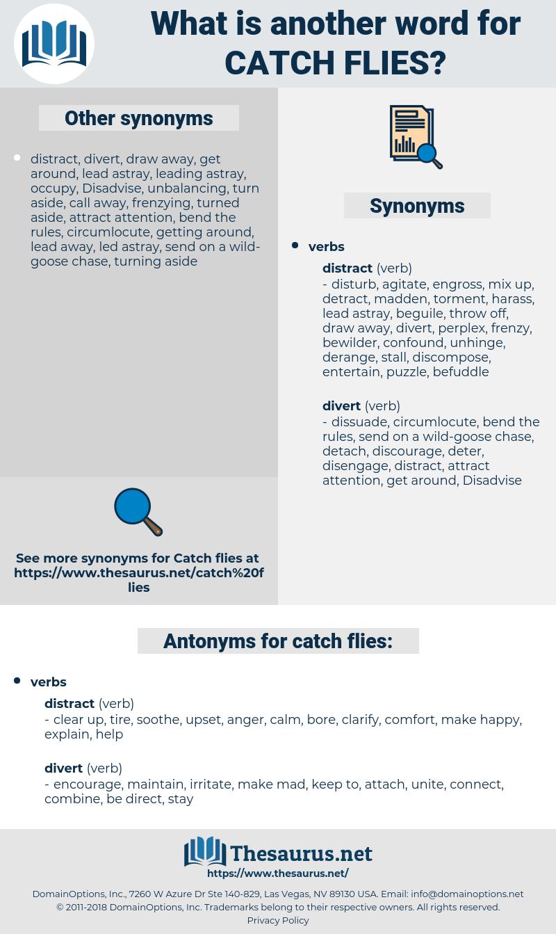 catch flies, synonym catch flies, another word for catch flies, words like catch flies, thesaurus catch flies