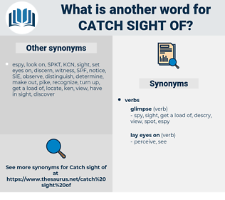 catch sight of, synonym catch sight of, another word for catch sight of, words like catch sight of, thesaurus catch sight of