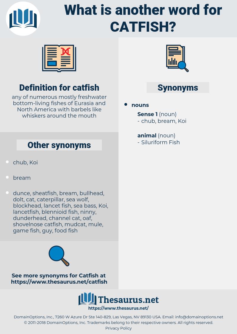 catfish, synonym catfish, another word for catfish, words like catfish, thesaurus catfish