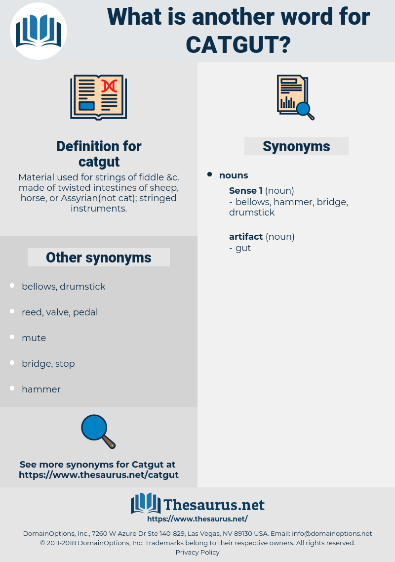 catgut, synonym catgut, another word for catgut, words like catgut, thesaurus catgut