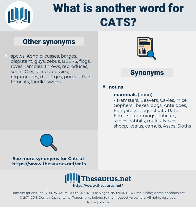 cats, synonym cats, another word for cats, words like cats, thesaurus cats