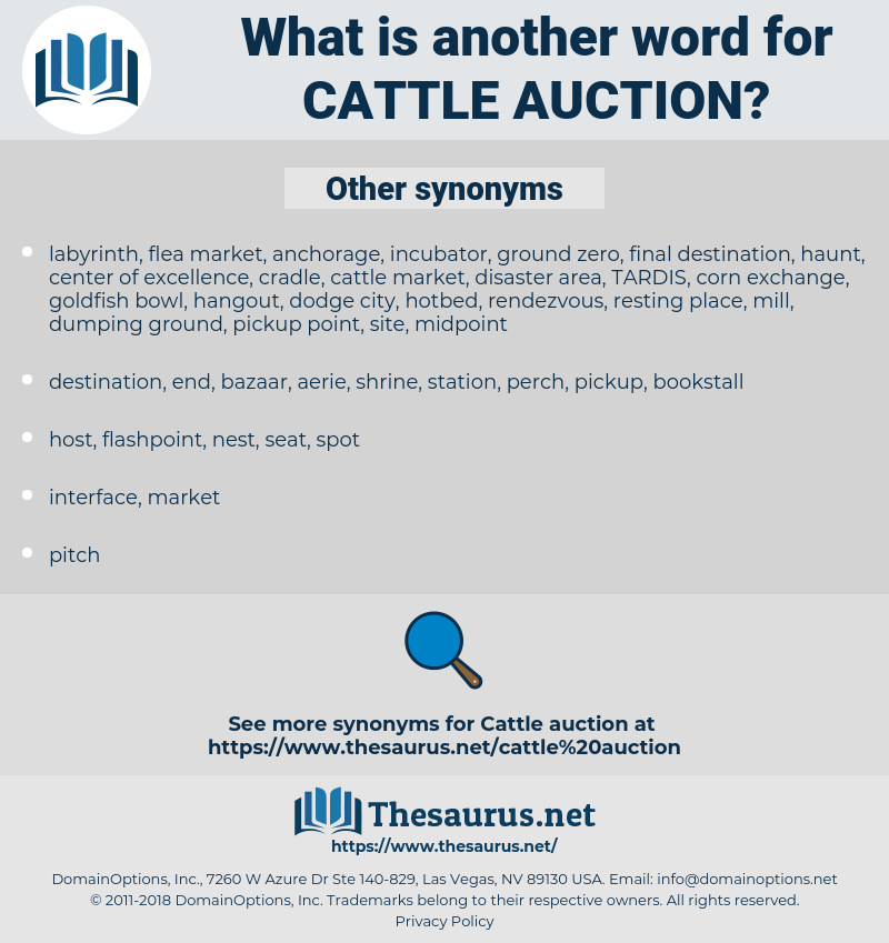 cattle auction, synonym cattle auction, another word for cattle auction, words like cattle auction, thesaurus cattle auction