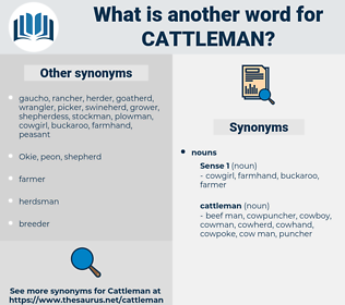 cattleman, synonym cattleman, another word for cattleman, words like cattleman, thesaurus cattleman