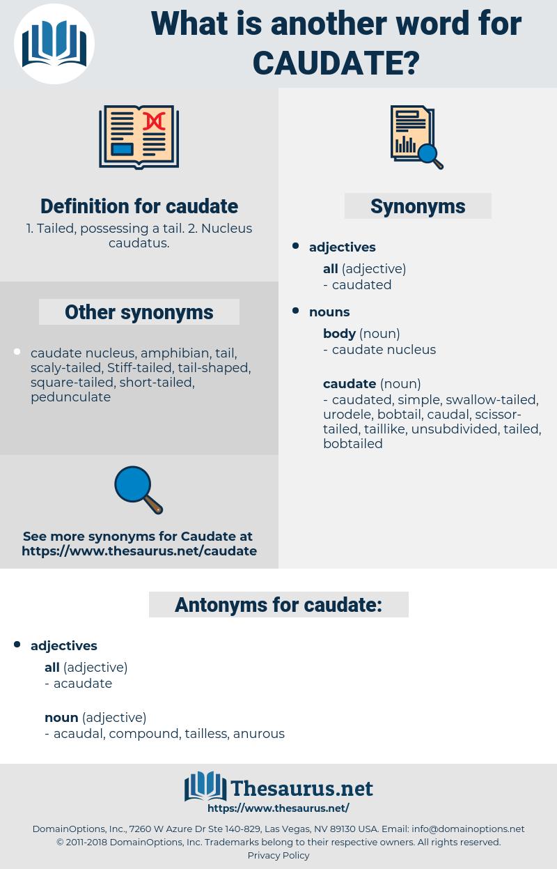 caudate, synonym caudate, another word for caudate, words like caudate, thesaurus caudate