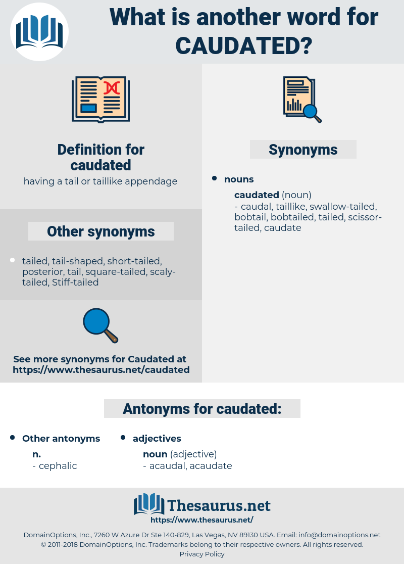 caudated, synonym caudated, another word for caudated, words like caudated, thesaurus caudated