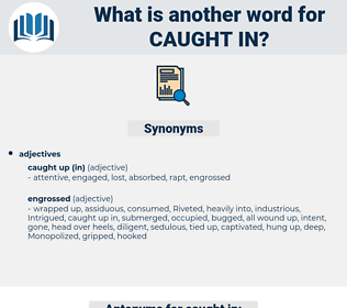 caught in, synonym caught in, another word for caught in, words like caught in, thesaurus caught in
