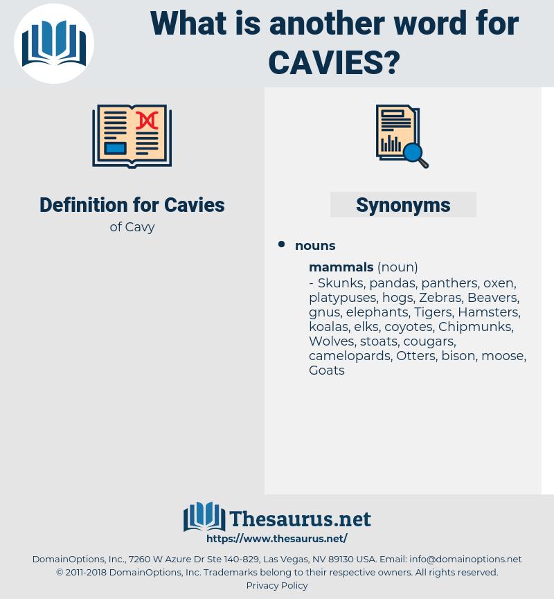 Cavies, synonym Cavies, another word for Cavies, words like Cavies, thesaurus Cavies
