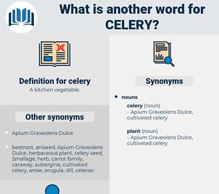celery, synonym celery, another word for celery, words like celery, thesaurus celery