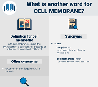 cell membrane, synonym cell membrane, another word for cell membrane, words like cell membrane, thesaurus cell membrane