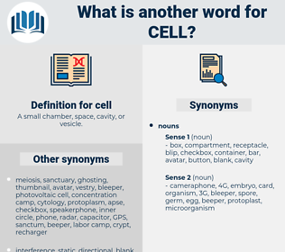 cell, synonym cell, another word for cell, words like cell, thesaurus cell