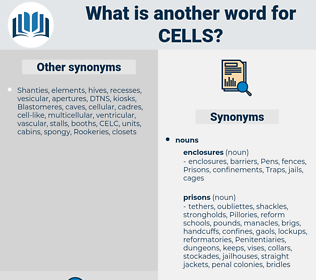 Cells, synonym Cells, another word for Cells, words like Cells, thesaurus Cells