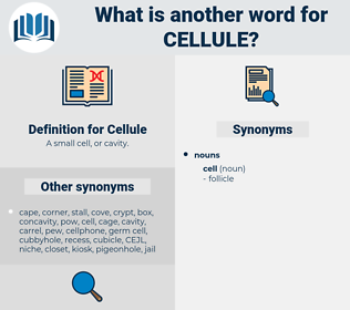 Cellule, synonym Cellule, another word for Cellule, words like Cellule, thesaurus Cellule