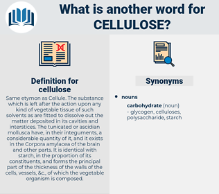 cellulose, synonym cellulose, another word for cellulose, words like cellulose, thesaurus cellulose
