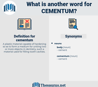 cementum, synonym cementum, another word for cementum, words like cementum, thesaurus cementum