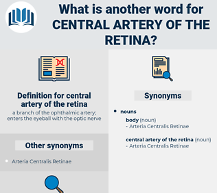 central artery of the retina, synonym central artery of the retina, another word for central artery of the retina, words like central artery of the retina, thesaurus central artery of the retina