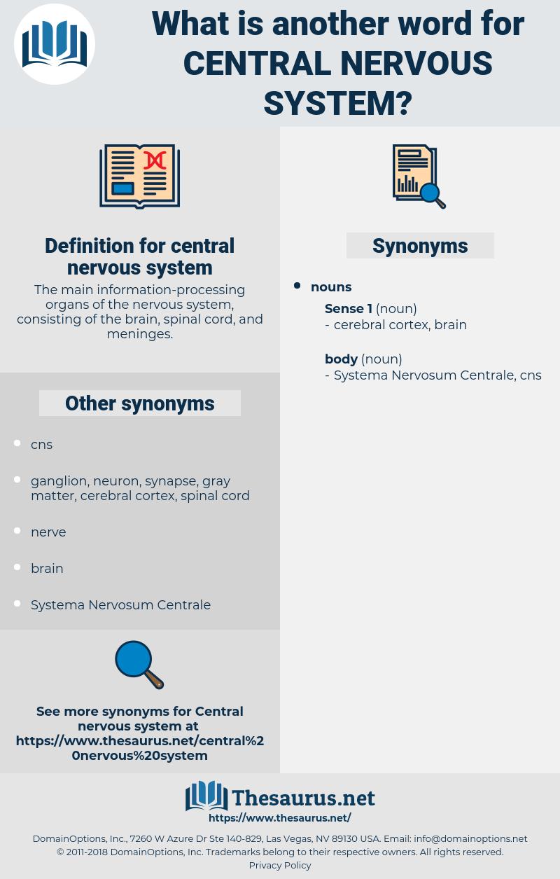 central nervous system, synonym central nervous system, another word for central nervous system, words like central nervous system, thesaurus central nervous system