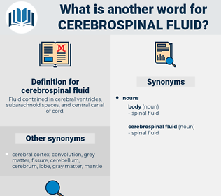 cerebrospinal fluid, synonym cerebrospinal fluid, another word for cerebrospinal fluid, words like cerebrospinal fluid, thesaurus cerebrospinal fluid