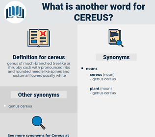 cereus, synonym cereus, another word for cereus, words like cereus, thesaurus cereus
