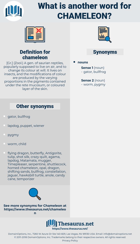 chameleon, synonym chameleon, another word for chameleon, words like chameleon, thesaurus chameleon