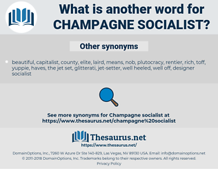 champagne socialist, synonym champagne socialist, another word for champagne socialist, words like champagne socialist, thesaurus champagne socialist