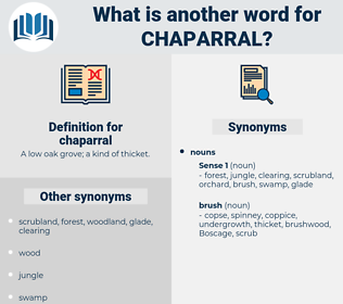 chaparral, synonym chaparral, another word for chaparral, words like chaparral, thesaurus chaparral