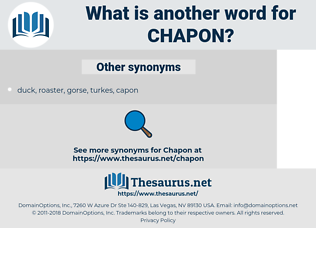 chapon, synonym chapon, another word for chapon, words like chapon, thesaurus chapon
