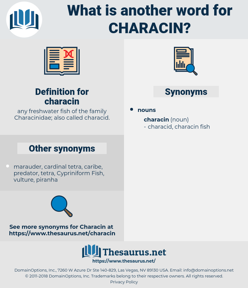 characin, synonym characin, another word for characin, words like characin, thesaurus characin