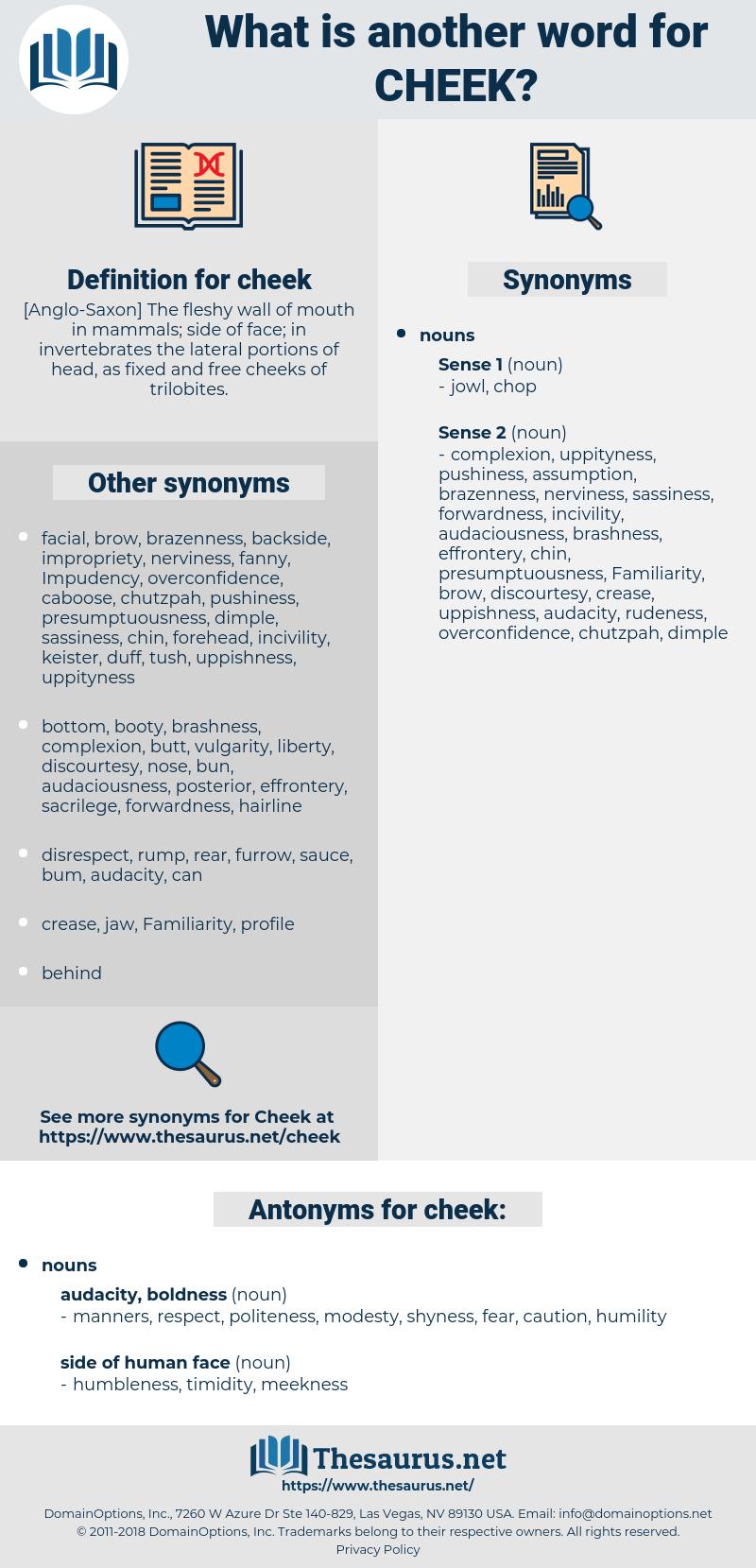 cheek, synonym cheek, another word for cheek, words like cheek, thesaurus cheek
