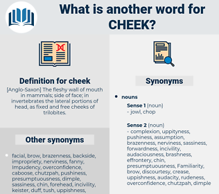 cheek, synonym cheek, another word for cheek, words like cheek, thesaurus cheek