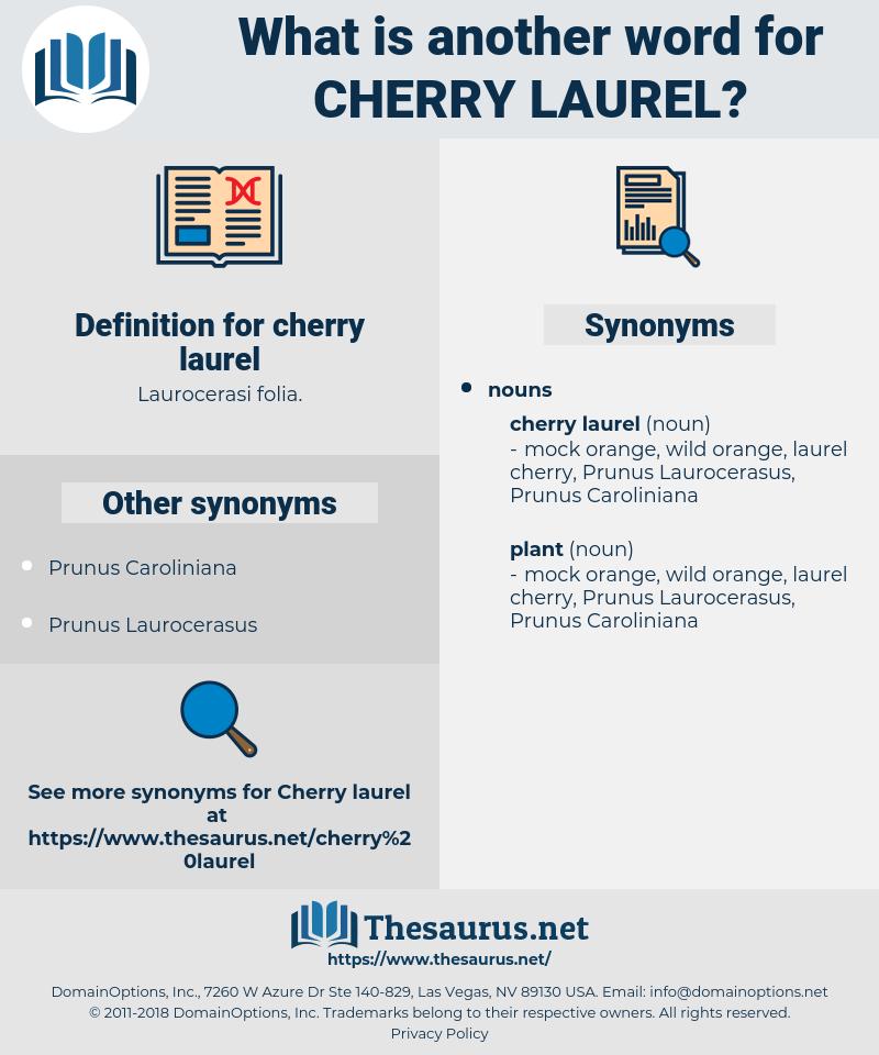 cherry laurel, synonym cherry laurel, another word for cherry laurel, words like cherry laurel, thesaurus cherry laurel