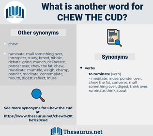 chew the cud, synonym chew the cud, another word for chew the cud, words like chew the cud, thesaurus chew the cud