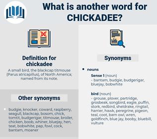 chickadee, synonym chickadee, another word for chickadee, words like chickadee, thesaurus chickadee