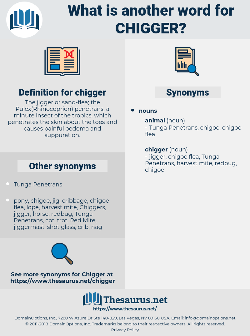chigger, synonym chigger, another word for chigger, words like chigger, thesaurus chigger