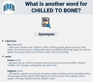 chilled to bone, synonym chilled to bone, another word for chilled to bone, words like chilled to bone, thesaurus chilled to bone